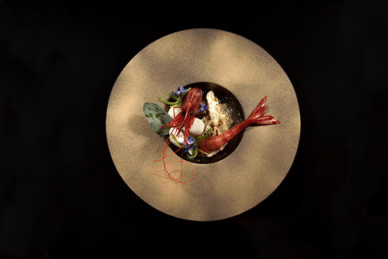 Revol Sphere seafood